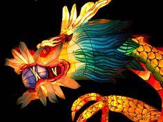 Google Image Result for http://teslkoreanews.com/wp-content/uploads/2011/05/LotusLanternFestival8-pic.jpg