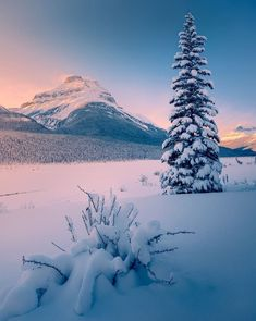 Best Mountain Wallpaper This image has g Photography Winter, Landscape Photography, Nature Photography, Photography Backgrounds, Amazing Photography, Winter Drawings, Mountain Wallpaper, Winter Love, Cozy Winter
