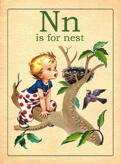 Nn is for Nest- Vintage alphabet flash cards, sweet illustrations Vintage Children's Books, Vintage Ephemera, Vintage Cards, Vintage Paper, Alphabet Cards, Alphabet And Numbers, Alphabet Quilt, Abc Cards, Images Vintage