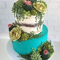This Artist Creates Stunning Cakes You Would Rather Put On Your Windowsill Than . - All things succulent - Cake Pretty Cakes, Cute Cakes, Beautiful Cakes, Amazing Cakes, Cupcakes Succulents, Bolo Tumblr, Cactus Cake, Cactus Cupcakes, Bolo Cake