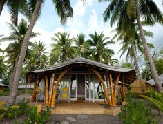Staying at Coconut Garden Beach Resort in Indonesia