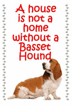 Basset Hound Fridge magnet various designs by MagnetsAndHangers