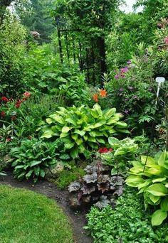 Afbeeldingsresultaat voor planten tuin op het zuiden Shade Garden Plants, Garden Shrubs, Lawn And Garden, Lush Garden, Shaded Garden, Sloping Garden, Garden Paths, Garden Nook, Ferns Garden