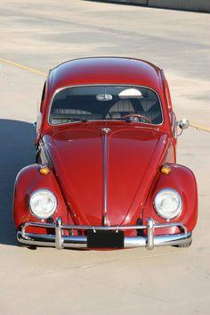. Volkswagen Germany, Bugs, Van Vw, Red Beetle, Vw Classic, Cute Cars, Car Tuning, Vw Beetles, Sport Cars