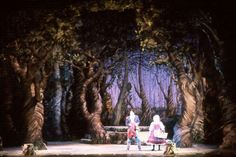 58 Best Into The Woods Costumes And Sets Images Musical