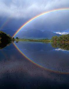 Spring Rainbow in Charlo, Montana / by Darrell Gulin