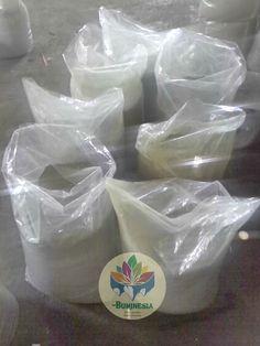 "Packaging time 👌👌👌 For more info, don't hesitate to contact us or visit : www.buminesia.com Stay health good people. ""Finest Quality, Finest Remedy"" #mitragynaspeciosa #mitragynahirsuta #mitragynajavanica #mimosapudica #moringaoleifera #kratom #sakaenaa #catsclaw #herb #remedy #herbalremedy #naturalremedy #medicine #health #relief #cure #iamkratom #savekratom #kratomsavelives #keepkratomlegal"
