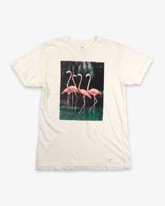 Duvin Design Feather Flamingo Short Sleeve Tee for Men in Antique DMT1530ANT