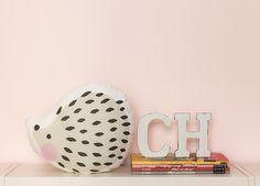 Most Wanted: Charuca Hedgehog Pillow - Super Cute Kawaii! Cute Illustration, News Blog, Decoration, Hedgehog, Super Cute, Kawaii, Pillows, Decor, Hedgehogs