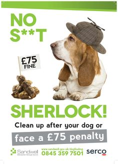 'Offensive' local council under fire for 'No S**t Sherlock' anti-dog mess campaign British Sitcoms, British Comedy, Trash Quotes, Free Chat Sites, Dog Signs, Embedded Image Permalink, Sherlock, Comedians, Dog Food Recipes