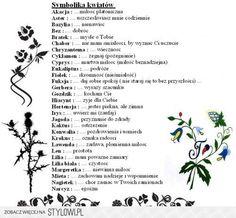 Symbole kwiatów i ich znaczenie na Stylowi.pl