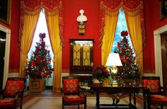 2009 Christmas Tree in Red Room @White House