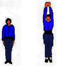 ejercicios para ser mas alto