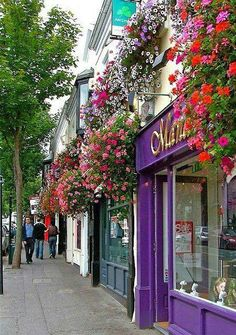 TODAY ~ DUBLIN I love the quaint little town of Malahide in Ireland.visited there four times!I love the quaint little town of Malahide in Ireland.visited there four times! Places Around The World, Oh The Places You'll Go, Places To Travel, Travel Destinations, Places To Visit, Around The Worlds, Ireland Vacation, Ireland Travel, Galway Ireland