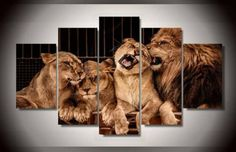 Frame-Picture-Canvas-Print-Leo-Lion-Family-Zoo-Big-Tiger-Wall-Art-Home-Decor