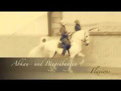 Die Schule der Légèreté, Philippe Karl, DVD Video, Reitschule