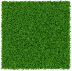 refreshing green grass background vector Green Grass Background, Glitter Background, Wooden Wallpaper, Studio Background Images, Texture Mapping, Aesthetic Backgrounds, Photoshop, Textures Patterns, Vector Free