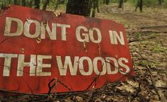 don't go in the woods - next Halloween sign for sure