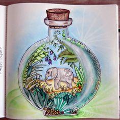Magical Jungle... Message in the bottle....Johanna Basford