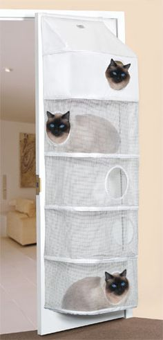 Attaches to back of standard door. #Cats #CatCondos