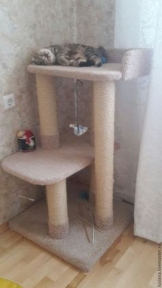 Accessories for cats, handmade. когтет… Accessories for cats, handmade. Scratcher Solo (suitable for large cats). Workshop of Lyudmila Popkova. Arts and crafts fair. Diy Cat Tower, Cat Tree Plans, Cat House Diy, Cat Perch, Cat Towers, Cat Shelves, Cat Playground, Cat Enclosure, Cat Scratcher