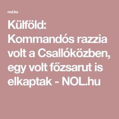 Külföld: Kommandós razzia volt a Csallóközben, egy volt főzsarut is elkaptak - NOL.hu