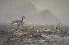 The Loner by Don Kloetzke