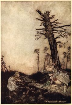 'Alice and The White Rabbit' by Arthur Rackham from 'Alice's Adventures in Wonderland' by Lewis Carroll Arthur Rackham, Lewis Carroll, John Tenniel, Alice In Wonderland Illustrations, Chesire Cat, Adventures In Wonderland, Wonderland Alice, Through The Looking Glass, Children's Book Illustration