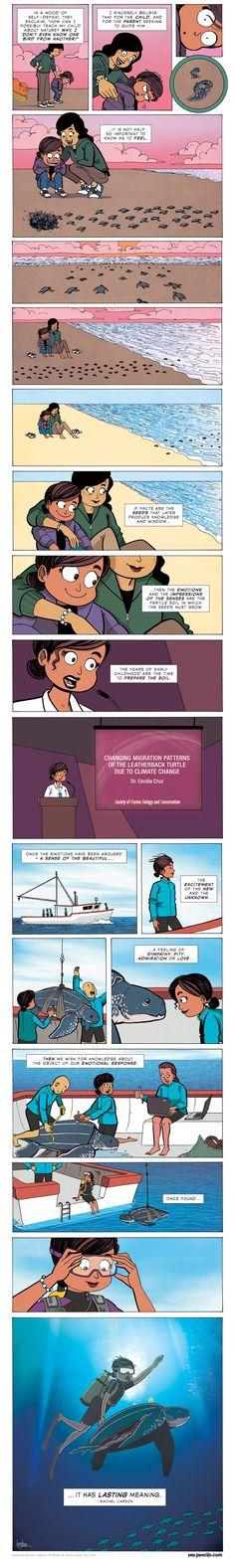 Asombro y emoción, un cómic con Rachel Carson como protagonista