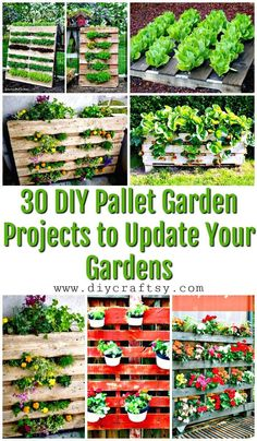 30 DIY Pallet Garden Projects to Update Your Gardens - DIY & Crafts - Constellation Tattoo - Tropical Garden Ideas - DIY Kitchen Ideas - Balayage Hair - Noise Piercing Vertical Pallet Garden, Herb Garden Pallet, Pallets Garden, Vegetable Garden, Pallet Gardening, Potager Palettes, Unique Garden, Diy Garden Projects, Crafty Projects