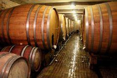 V Pivnici Radošina už storočia vzniká kvalitné a oceňované kráľovské víno