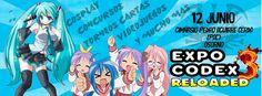 EXPO CODEX 3, 2016 - Osorno, Chile, 12 de Junio 2016 ~ Kagi Nippon He ~ Anime Nippon-Jin