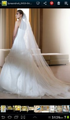 My dress and veil