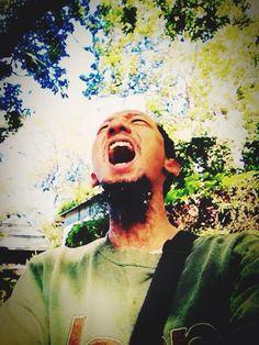 Freedom to Haaaaaa Forest