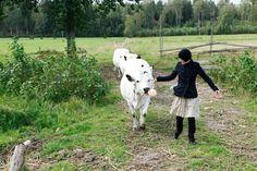 Vuonna 2010 Elisa Niemi oli onnensa kukkuloilla aloittaessaan pestinsäLuomuliiton toiminnanjohtajana. Unelmatyöksi hän sitä nimitti jo silloin eikä innostus ole siitä hiipunut. Oikea ihminen, oikeassa paikassa Lukion jälkeen aloitetut agroekologian opinnot yhdessä rinnalle sopivien luomuopintojen kanssa olivat Elisalle nappivalinta. Oppimateriaalien valmistaminen luomuopintoja järjestäneen Ruralia-instituutin kanssa oli sekin askel kohti unelmaa eikä vuosien saatossa hankittu…