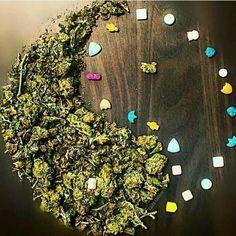 Oh Yeah    #weed #cannabis #joint #highlife #marijuana #ganja #maryjane #blunt #sohigh #kush #haze #hash #smokeweed  #stonernation #gethigh #medicalmarijuana #rawweed  #rollitup #takeahit #dope #stoned #hightimes Medical Marijuana, Cannabis, Smoking Weed, Ganja, Stay High, Meme Center, Treasure Chest, Stoner, Roxy