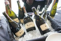 Nosh and Nibble - Vancouver International Wine Festival - Cool Climate, Cool Review - Review - Vancouver #foodie #foodporn