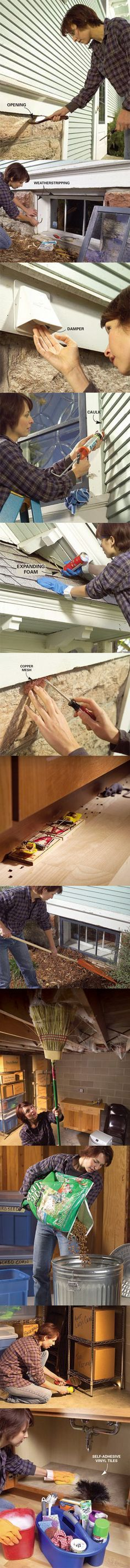 If unwanted critters are waging war on your house, it's time to fight back. Here are some effective pest-fighting strategies. We'll give you tips about how to close the entryways that let critters in, and also how to evict them if they manage to get past your defenses. Use the fall pest prevention tips at http://www.familyhandyman.com/DIY-Projects/Outdoor-Projects/Yard/Pests/fall-pest-prevention-tips to keep pest out of your home.