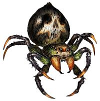latest (200×201) Giant Spider, Dragons Crown, Sword And Sorcery, Creepy, Concept Art, Beast, Video Games, Original Art, Character Design