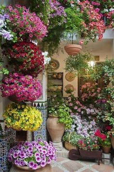 Small Patio Garden Ideas with Cute Colorful Flowers Pots Design