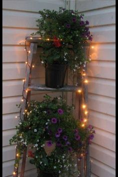 A step ladder, a couple plants and some fairy lights. Dress up any corner. So sweet!