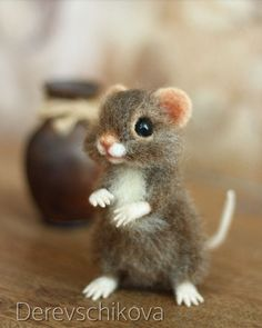 Cutest Mouse Ever.
