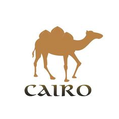 The city logo is used to represent the culture of the city and show what makes the city stand out from any other city. The fictitious Cairo city logo that I created represents the architecture of the city and the camel represents the strong will and long treks that the people of Cairo have endured.  #hausofkacher #design #graphicdesign #graphicdesignhawaii #hawaii #hawaiidesign #aloha #ourkakaako #logo #designer  #metrnohnl #hnl #waikiki #hiphop #music #musicdesign #defjamrecords #defjam…