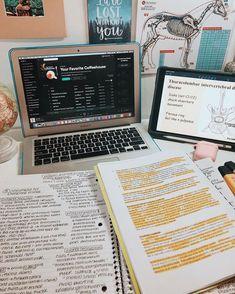 School Organization Notes, Study Organization, School Notes, Tittle Ideas, Study Pictures, School Study Tips, Study Space, Study Areas, Study Hard