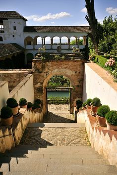 Generalife, Alhambra, Granada, Spain- please take me baaaaccck Places Around The World, The Places Youll Go, Travel Around The World, Places To See, Around The Worlds, Madrid, Granada Andalucia, Andalusia Spain, Alhambra Spain