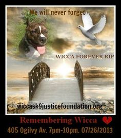 The legacy of a dog named Wicca