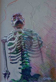 A Skeleton in The Surgeon's Hall - Felt-tip pens on paper by Colin Dunbar Anatomy Drawing, Anatomy Art, Life Drawing, Figure Drawing, Ap Studio Art, Skeleton Art, A Level Art, Ap Art, Skull Art
