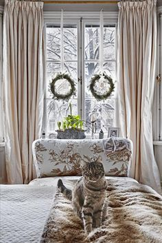 i love the wreaths hanging in the windows with white ribbon!