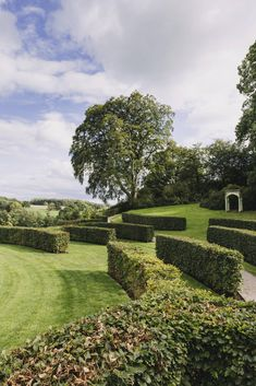 Curving beech hedges form an amphitheatre framing views of the portico. Manor Garden, Garden Park, Hydrangea Arborescens Annabelle, Beech Hedge, Landscape Design, Garden Design, Herbaceous Border, Topiary Garden, Gothic House