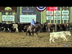 Loping – What's the Big Deal? - Quarter Horse News
